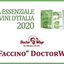 Neige d'Or 2017 Faccino DoctorWine