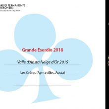 NEIGE D'OR 2015: GRANDE ESORDIO VERONELLI