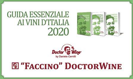 Neige d'Or 2017 Faccino DoctorWine
