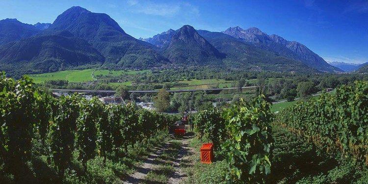Un weekend in Valle d'Aosta tra cantine e castelli